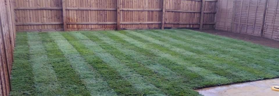 Another lawn installed.
